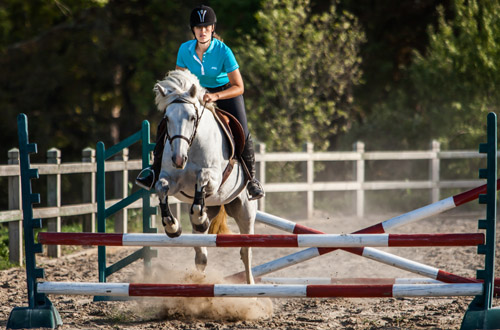 equitation-obstacles-elevage-de-biar-pension-chevaux-montpellier-500x330